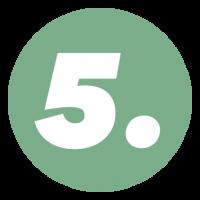 FFF - Numeri 5
